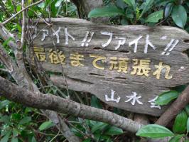 野底マーペー登山道道標
